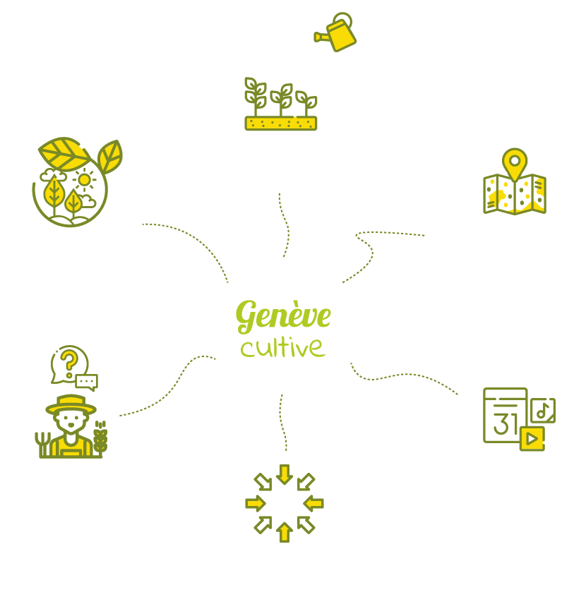 infographie genève cultive agriculture urbaine potager urbain genève potager collectif atelier jardinage enfant le potager urbain facile et naturel jardin urbain balcon .png